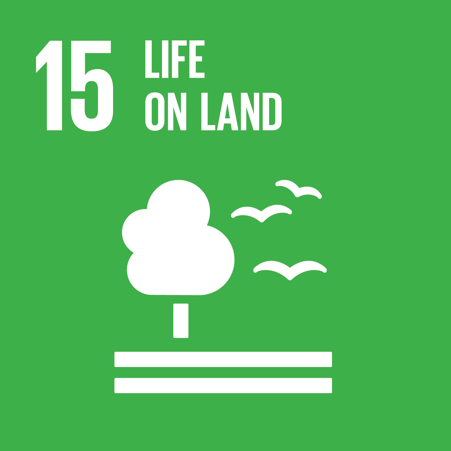 Image of Goal 15 - Life on Land