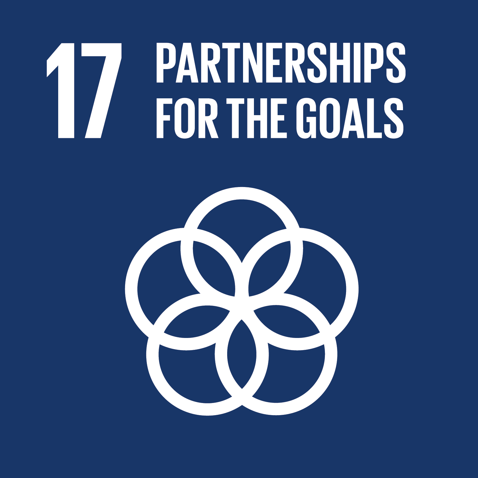 Image of Goal 17 - Partnerships for the Goals