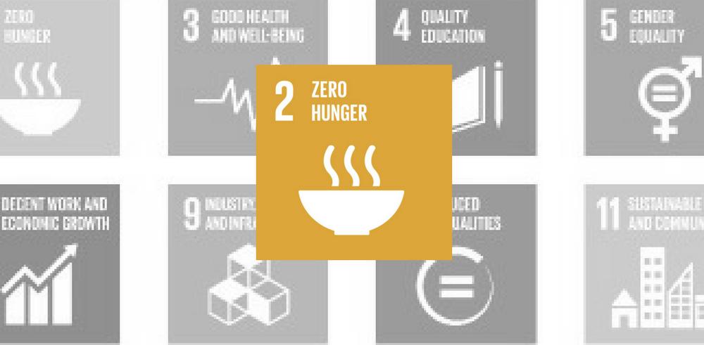 SDG 2: Zero Hunger Yellow Icon