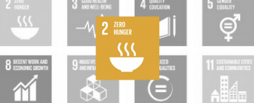 SDG 2: Zero Hunger Yellow Icon