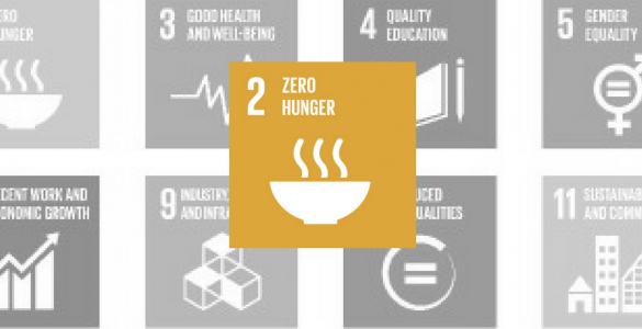 Zero Hunger