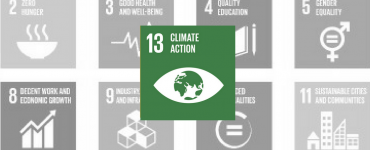 SDG 13: Climate Action Green Icon