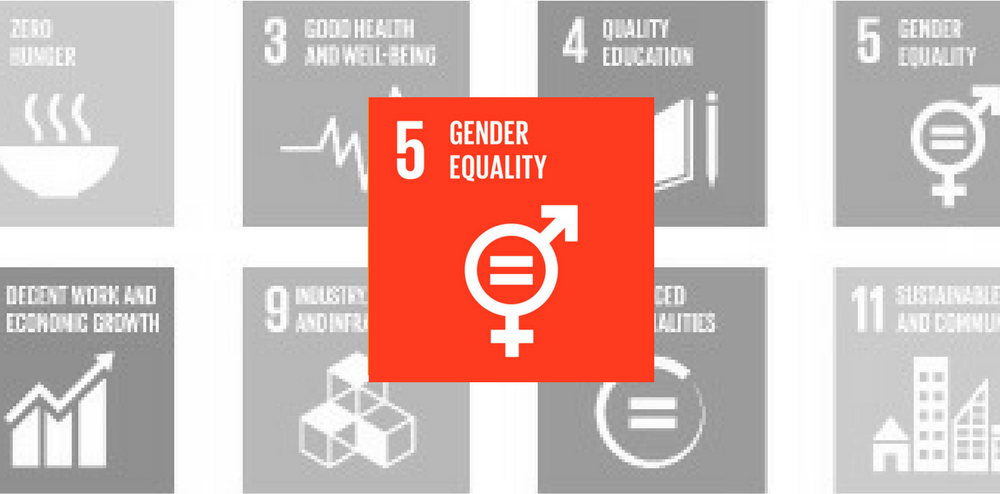 SDG 5: Gender Equality Red Icon