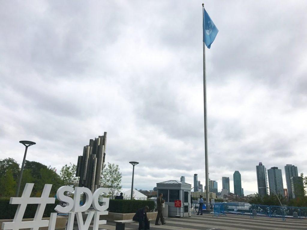 SDG live Image