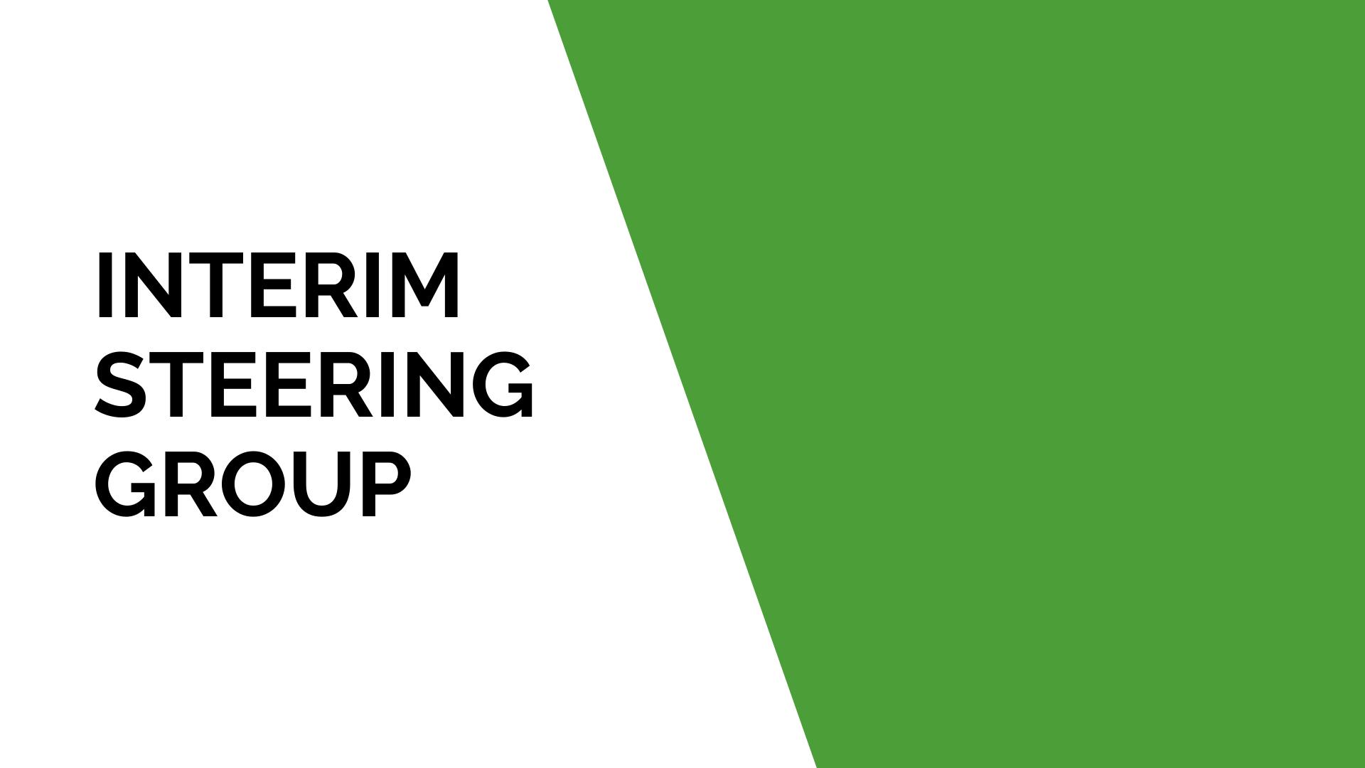 Interim Steering Group
